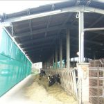 Constructiile zootehnice si agricole, eficientizate de solutiile de la Super Farm Land
