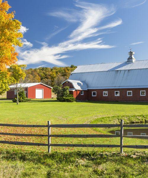 Tine daunatorii departe de ferma ta – Super Farm Land te poate ajuta in acest sens!